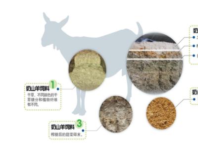 进口羊奶粉佳贝艾特:原装进口,品质之选